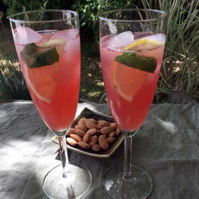 Opskrift: Spicy Twists rabarberdrink