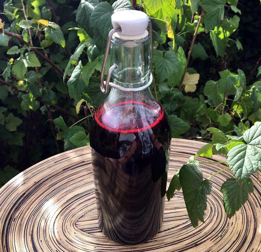 Opskrift: Hjemmelavet solbærsaft – koncentreret