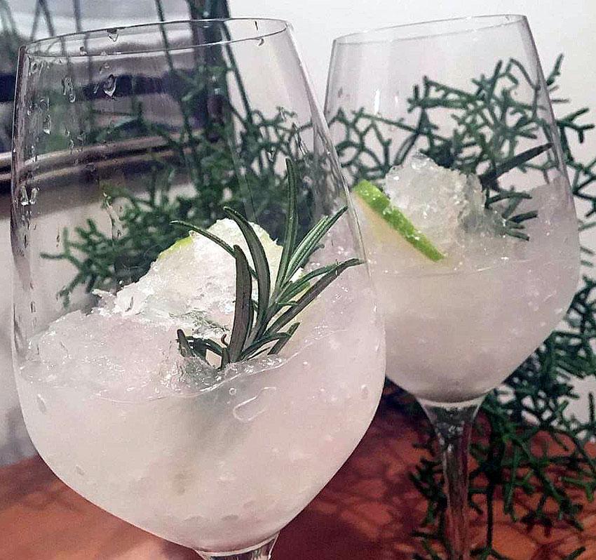 Opskrift: Fræk frozen gin tonic