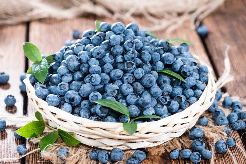 Blåbær er en brain food