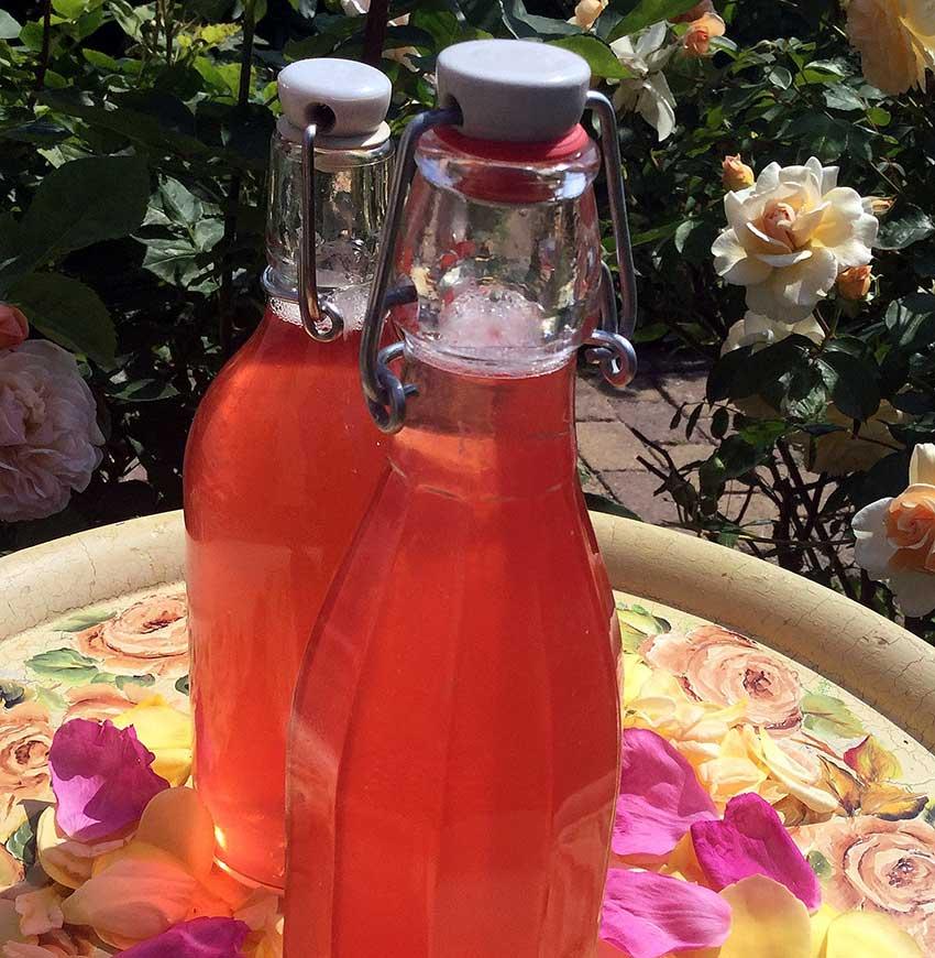 Opskrift: Skøn rosensaft fra egen have
