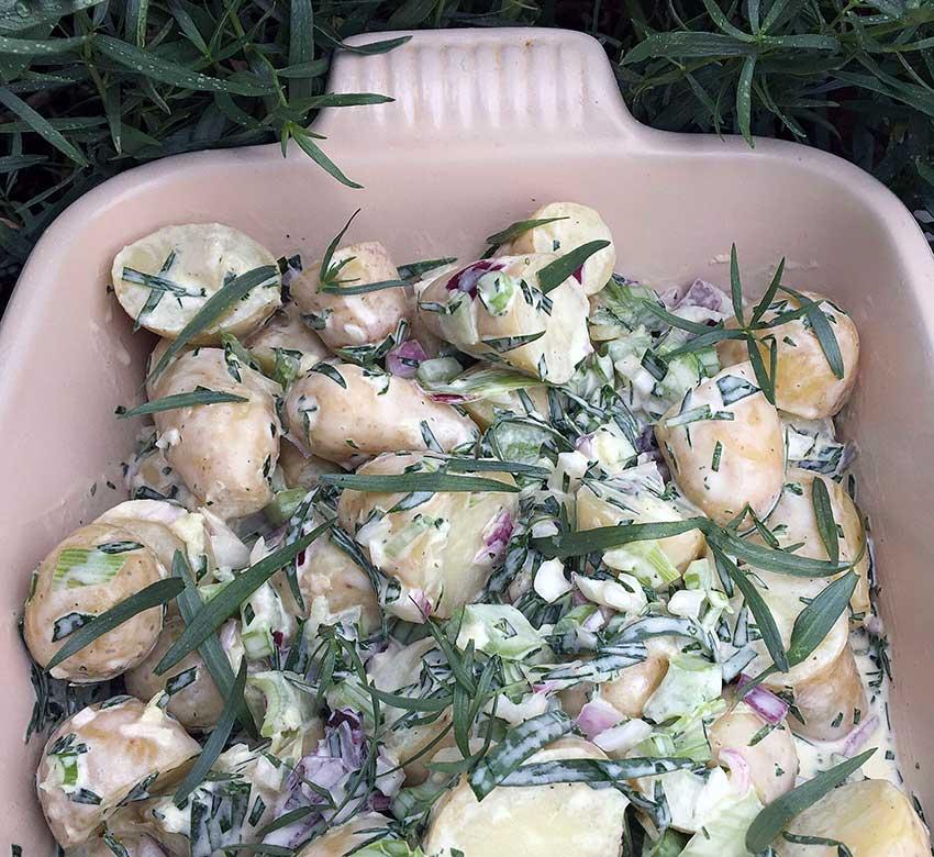 Opskrift: Kold kartoffelsalat med esdragon