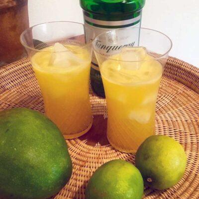Opskrift: Den fænomenale Gin Hass