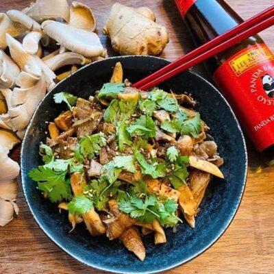 Lynstegte-oestershatte-fra-Sichuan