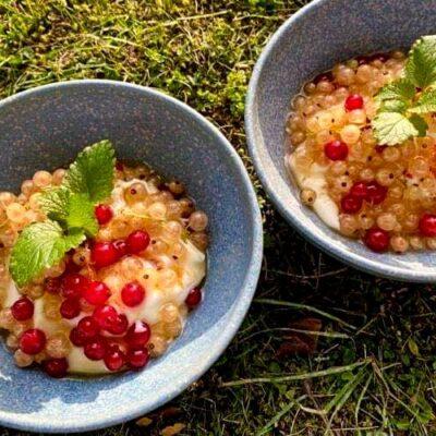 Rysteribs-plus-ribs-med-graesk-yoghurt-og-akaciehonning